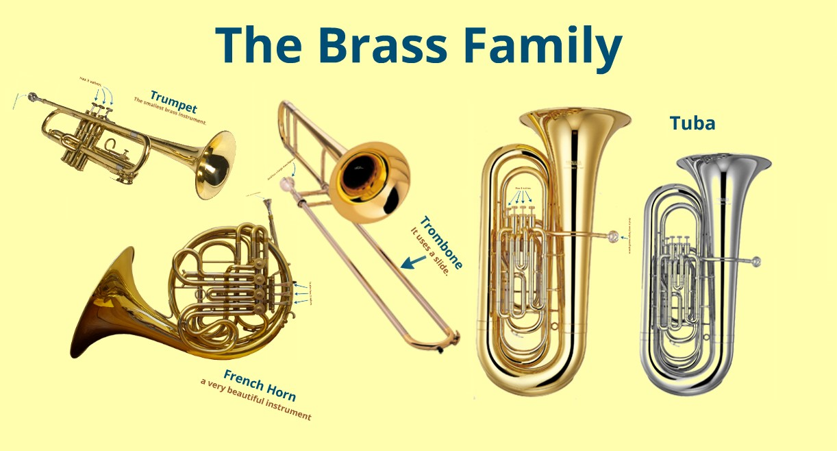 what is a brass instrument Brass instruments information, related careers, and college programs.
